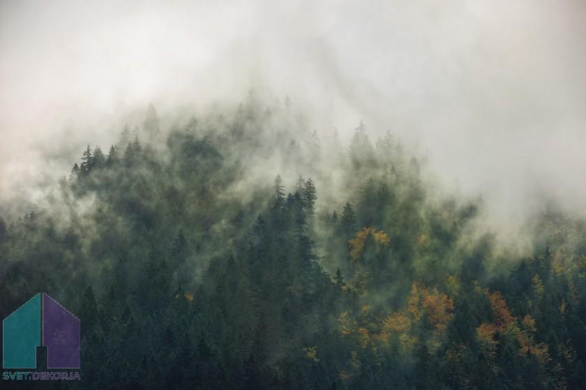 Fototapeta - Tales of the Carpathians