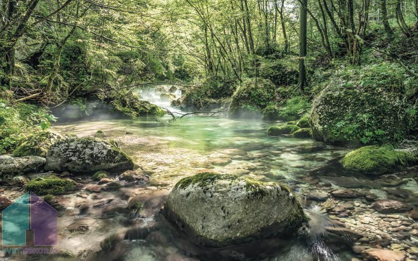 Fototapeta - Tranquil Pool