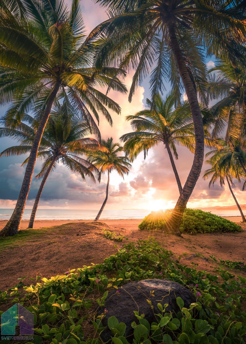 Fototapeta - Vertikalni raj