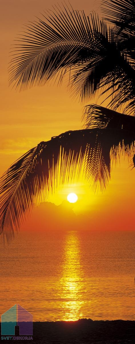 Fototapeta - Palmy Beach Sunrise