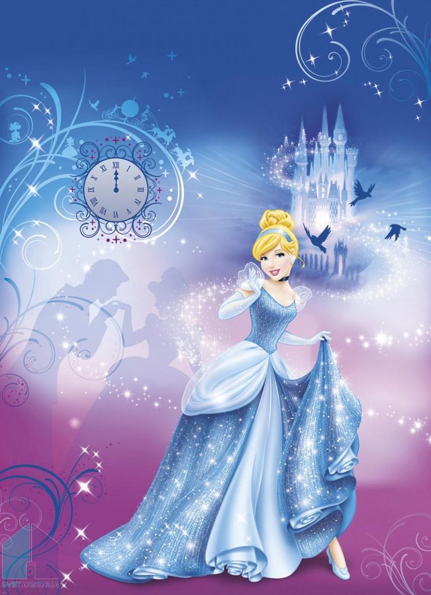 Fototapeta - Cinderella's Night