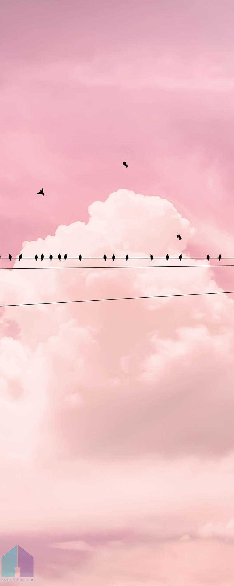 Fototapeta - Cloud Wire Panel