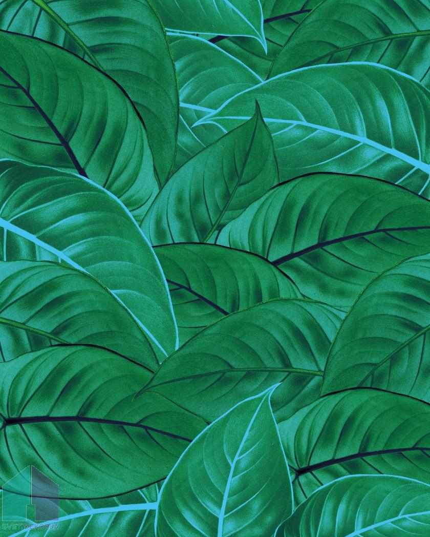 Fototapeta - Jungle Leaves