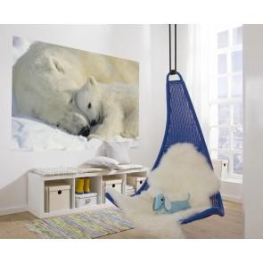 Fototapeta - Polar Bears