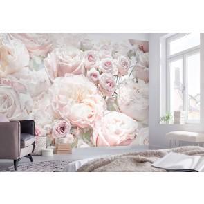 Fototapeta - Spring Roses