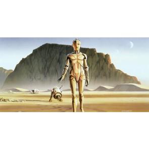 Fototapeta - Star Wars Classic RMQ Droids