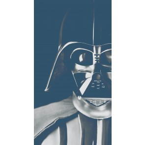 Fototapeta - Star Wars Classic Icons Vader