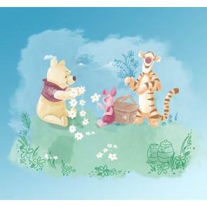 Fototapeta - Winnie Pooh Picnic
