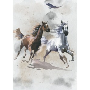 Foto tapeta - Wild Ride