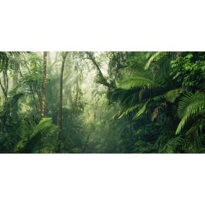 Fototapeta - Tropenwelten