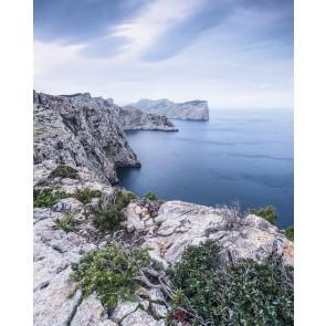 Fototapeta - Bizarre Coast