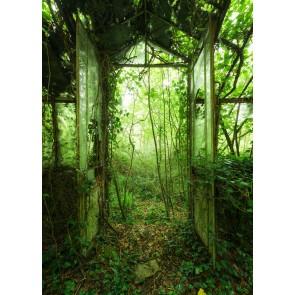 Foto tapeta - Greenhouse