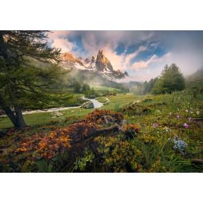 Fototapeta - Zadnji raj
