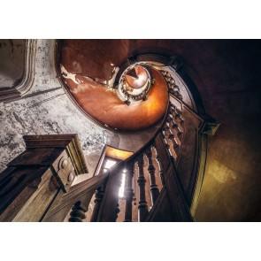 Foto tapeta - Oak Spiral