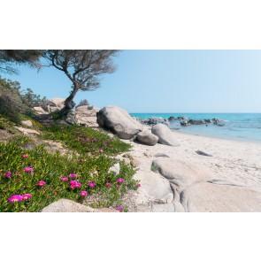 Fototapeta - Sredozemske sanje