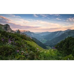 Fototapeta - Naravni park Allgäu Visoke Alpe