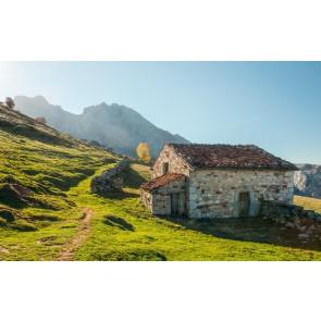 Fototapeta - Picos de Europe Alm