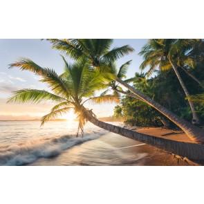 Fototapeta - Skrivnostna plaža