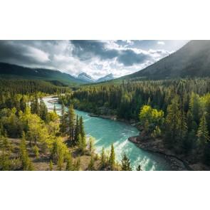 Fototapeta - Divja Kanada