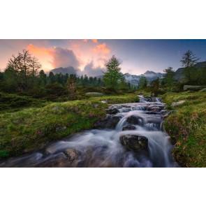 Fototapeta - Divji raj