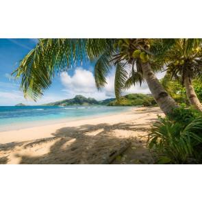 Fototapeta - Plaža Oaza Južno morje