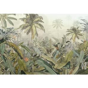 Fototapeta - Amazonia