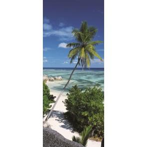 Fototapeta - Palmtree