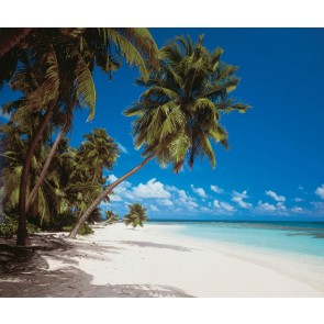 Fototapeta - Maldives