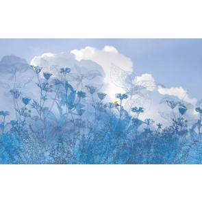 Fototapeta - Blue Sky