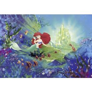 Fototapeta - Ariel' s Castle
