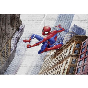 Fototapeta - Spider-Man New Concrete