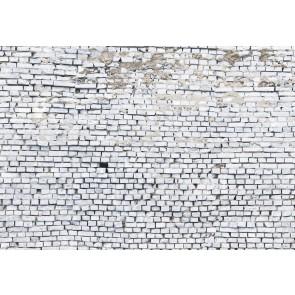 Fototapeta - White Brick