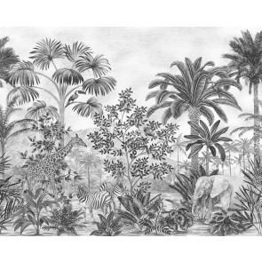 Foto tapeta - Jungle Evolution