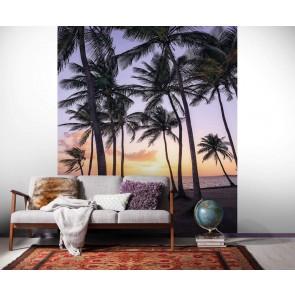 Fototapeta - Palmtrees on Beach