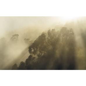 Fototapeta - Misty Mountain