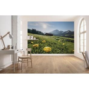 Fototapeta - Alpenglück