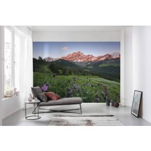 Fototapeta - Slikovita Švica