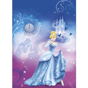 Fototapeta - Cinderella's Night