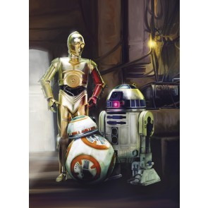 Fototapeta - STAR WARS Three Droids