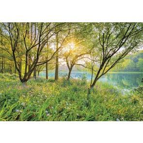 Foto tapeta - Spring Lake