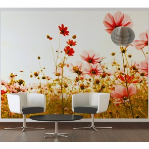 Foto tapeta - Flower Meadow 2