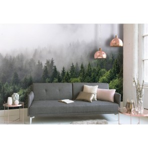 Foto tapeta - Foggy Fir Trees