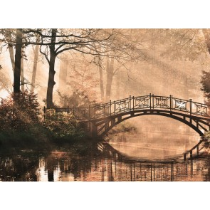 Foto tapeta - Park Bridge 2
