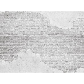 Foto tapeta - Old Brick Wall