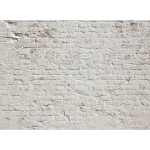 Foto tapeta - Brick White