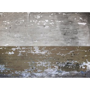Foto tapeta - Concrete Coated