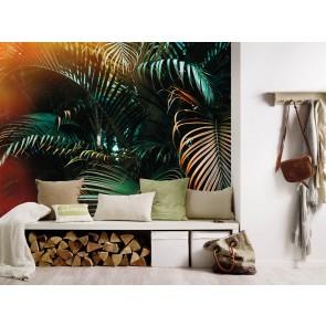 Foto tapeta - Jungle Colour