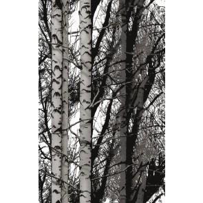 Samolepilna folija - Dekor Wood