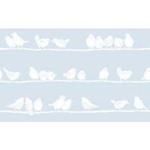 Statik folija - Transparent Premium Filippa