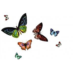 Namizni pogrinjek - Rio Papilio